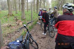 fahrradtour-mit-dem-albverein-4-5-2017-18