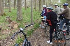 fahrradtour-mit-dem-albverein-4-5-2017-19